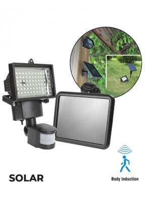 Solar Powered Motion & LED Sensing ..