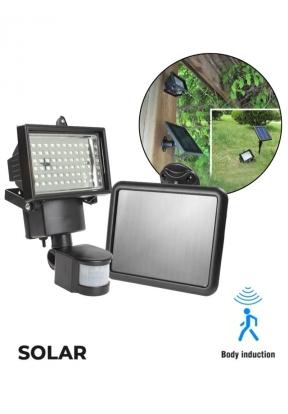 Solar Powered Motion & LED Sensing ..